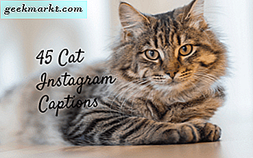 45 Cat Captions voor Instagram - Meow